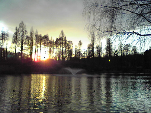 Sunset at Inokashira Pond 2