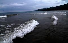 miscellaneous little waves