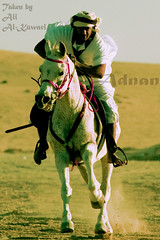 Qatar Earth  riding a horse .....                           ... (Qatar Earth  ) Tags:
