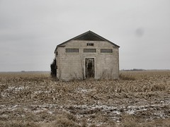 the cry 2: bleak is the land (mereshadow) Tags: sky snow cold illinois afternoon southern doorway flurries bleak cornfields today vkiw