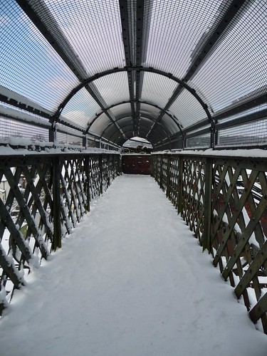snowy footbridge