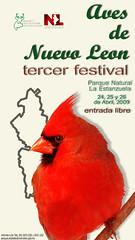 TERCER FESTIVAL DE AVES