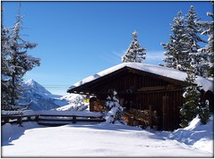 Chalet on the Penken (crafteelady) Tags: winter snow tag3 taggedout austria tirol tag2 tag1 view shed storage chalet tyrol zillertal mayrhofen woodshed penken zillervalley