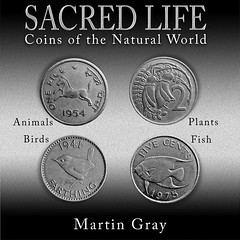 Gray Sacred Life