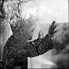 Friðrik Darri doubly exposed (Pezti) Tags: boy bw woman white black window blackwhite iceland woods exposure berries kodak doubleexposure trix double 400 88 kiev reykjavík kiev88 pétur geir húsafell darri friðrik kristjánsson