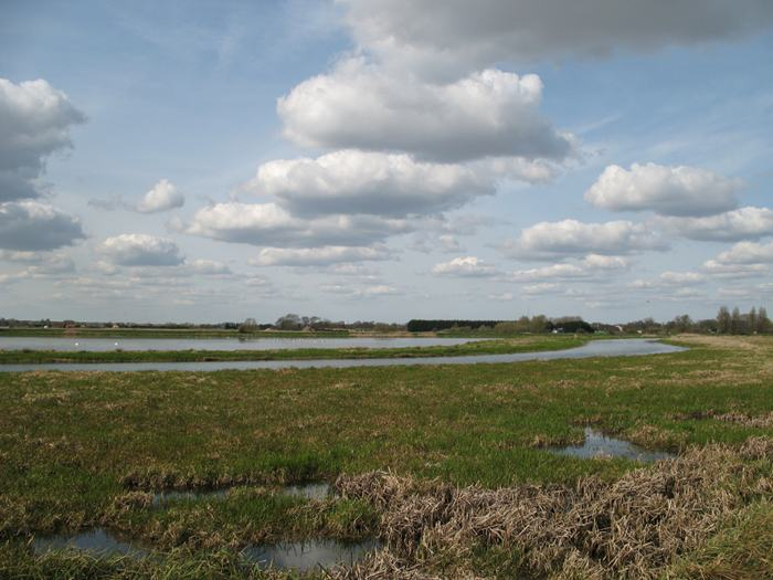 Lakenheath Fen nature reserve