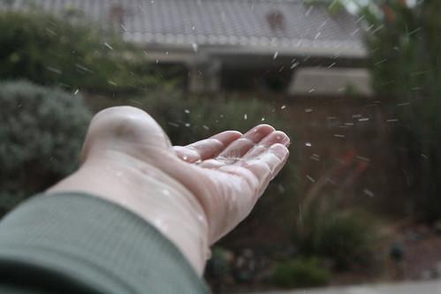 Catching Rain