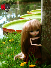 Pullip in heaven... (Cherry Bomb 81) Tags: flowers lake flower tree love nature make yellow japan riodejaneiro garden hair cherry landscape toy lago doll brinquedo heaven rj natureza extreme makeup paisagem vitria yellowflower planning wig jardim jardimbotnico makeover pullip japo collectible boneca custom bomb festa rvore cabelo vestido jun 81 cherrybomb extrememakeover peruca rida blondhair partydress rgia loiro pullipdoll customizao pulliprida cabeloloiro collectibledoll pullipcustom colecionvel bonecacolecionvel
