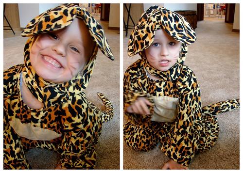 Leopard Zoey