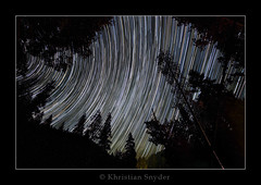 Star Trail Attempt #1 (Khristian Snyder) Tags: longexposure trees sky night forest stars nationalpark sequoia startrails alemdagqualityonlyclub