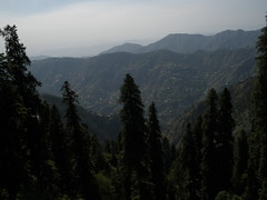 Landscape of Mountains (eirtaza) Tags: road city flowers blue friends boy red party summer people orange mountain snow man mountains flower reflection tree green cup nature water girl grass car sunglasses yellow rock pine forest landscape lights monkey picnic tea dam jet peak human jungle valley bunch kashmir height chairlift scenry islamabad murree vast ayubia liftchair