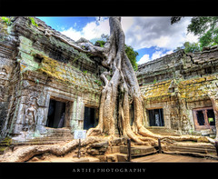 Consumed By the Jungle | Ta Prom Temple, Siem Reap, Cambodia :: HDR (:: Artie | Photography ::) Tags: classic architecture photoshop canon temple bravo cambodia khmer cs2 stones 10 buddhist roots wideangle jungle handheld historical 20mm siemreap angkor hdr bayon angkorthom artie taprom 3xp sigmalens photomatix jayavarman 1186 tonemapping tonemap 400d rebelxti tapromtemple eastofangkorthom
