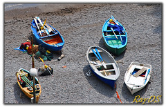 Boats (RayDS) Tags: colors boats coast boat photo nikon barca foto barche colori amalfi conca marini d80 rayds