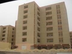 img_0421 (LovelyNatasha) Tags: dona qatar meloncholy sadism masochism