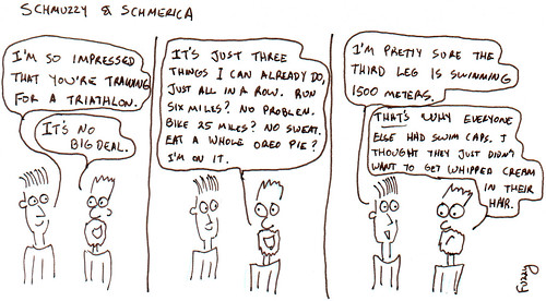 366 Cartoons - 133 - Schmuzzy and Schmerica