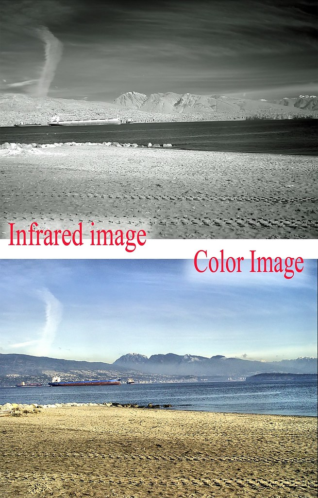 Infrared and Color comparison