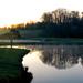 morning reflectioin_72