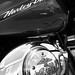 Harley-Davidson in Detail