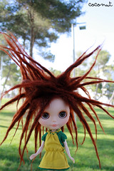 Evolet (------coconut) Tags: en dreadlocks doll el blythe ha custom deo sbl rastas enchufe metido ashletina