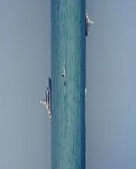 Swim (Mohammad Reza Hassani) Tags: sea man swimming swim canon boat persian dubai gulf emirates swimmer persiangulf        sky