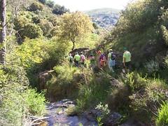 Los Puentes de Malpaso (Molinaseca)