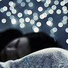 Bokeh Dreams (koinis) Tags: blue sleeping rabbit cat john wednesday bed bokeh sleep dream sigma pillow explore views dreams 24 18 fredrik 500x500 13000 hbw twtmeblogged karmanominated koinberg koinis kjesäter
