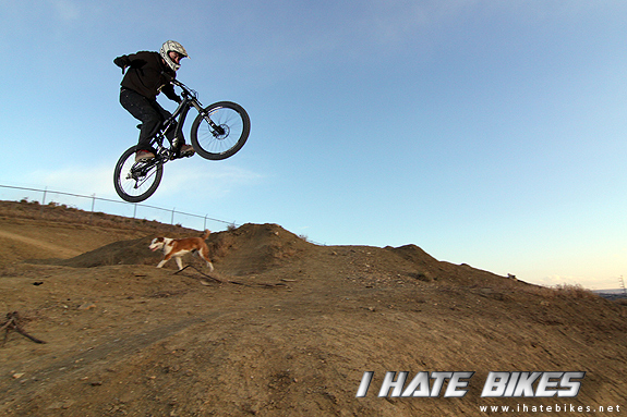 Fisher Roscoe: no hander over Shawns dog