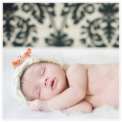 09 (AndreaHalsey) Tags: design albums newborns