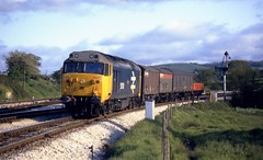 Class 50 50010 Aller Jnc 7/5/82 (Stapleton Road) Tags: hoovers namers semaphore signal class50 monarch allerjunction largelogo freight 50010 diesel dainton dieselloco englishelectric locomotive train 1982