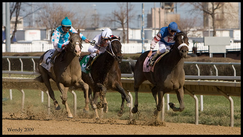 Illinois derby