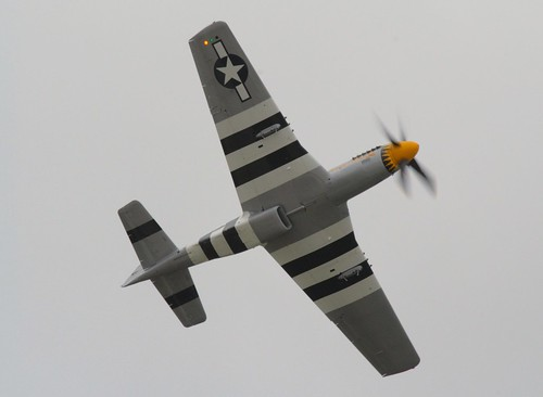 P 51d 5 Mustang Invasion Stripes Documented Bug Reports