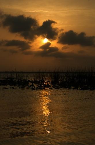 sunset_vert_0024