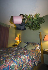 The best time to plant a tree is twenty years ago. The second best time is now. (scienceduck) Tags: 15fav selfportrait plant ontario canada tree me public 510fav fun hotel jump bed funny quote motel wideangle moi pot april 2009 bedjumping bobcaygeon scienceduck bedjump hotelbedjump princesmotel motelbedjump