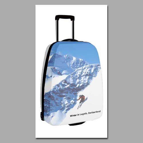 Novelty Luggage- Winter Travel