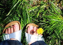 my new birkies 116/365 (linaloo1) Tags: new birkenstocks birkies
