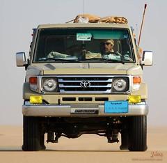 Arab Desert (q8500e) Tags: kuwait q8 q8i q8500e