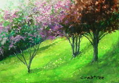 """Heaven on the Hillside"" an acrylic painting (Elizabethc) Tags: flowers trees light summer sunlight art floral painting landscape bush artist acrylic shadows michigan branches bloom bouquet bushes contrasts blooming battlecreek elizabethcrabtree crabtreeoriginal"