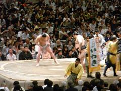 日馬富士 画像72