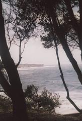 Coogee baths Leica IIIa  Summitar 50mm (jiulong) Tags: leica 50mm iiia summitar