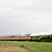 60163 Tornado - Saturday 9th May 2009 the 15.50 from Goathand to Newton Dale at Moorgates