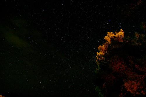 Nebula..?
