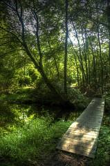 Mercer County Park NJ (bpwilby) Tags: usa newjersey nj mercercounty