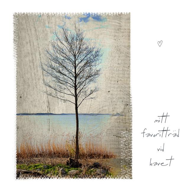 trädet_copy