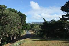 Southern Walkway Wellington