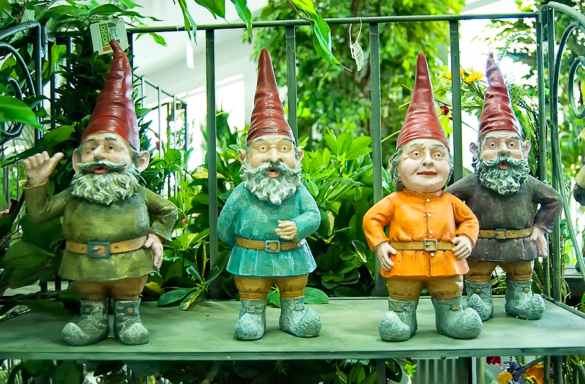 Gnomes were everywhere
