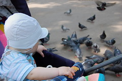 Baby and pigeons. (odeku03(Children and others)) Tags: park family girls summer people woman baby white color cute love beautiful beauty smile face childhood smiling fashion loving kids female hair children fun person togetherness eyes nikon women day child looking friendship little expression pigeon pigeons small joy daughter young mother expressions happiness parent human blond leisure toothy activity cheerful relaxation attention emotions affectionate facial carefully feelings confidence concentrate caucasian lifestyles closely attentively familygetty2010 gettyvacation2010 gettyimagesrussiaq2