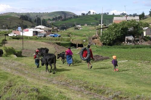 Ecuadorian highland farmers...