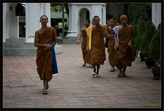 Visiting Monks (Ursula in Aus (Away)) Tags: brown male youth thailand temple buddhist buddhism thai wat phrapathomchedi nakhompathom globalspirit youngmonks earthasia