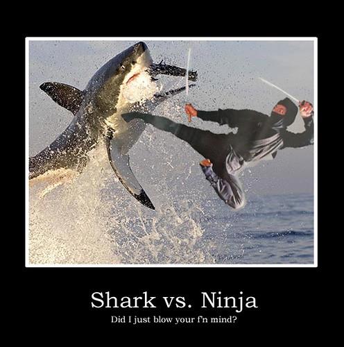 Ninjas! - The Club House