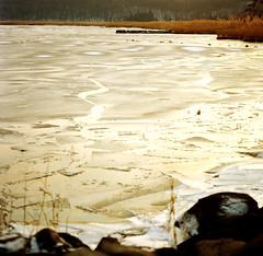 glowing ice (lawatt) Tags: newyork 120 film ice water river frozen hasselblad hudson portra piermont freshwater 400nc 120mmcf